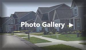 photo gallery widget